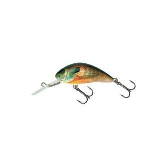 Salmo Hornet 6F RS